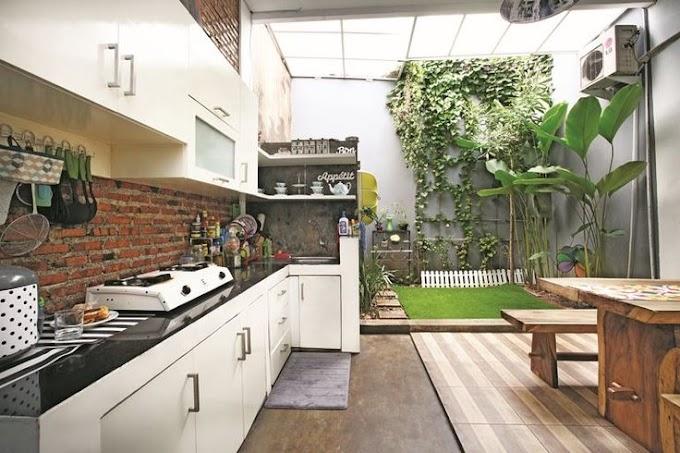 Cara Membasmi Kecoa Di Dapur   Ide Rumah Minimalis
