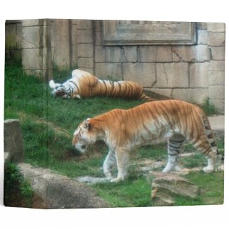 Tiger's Den Binder