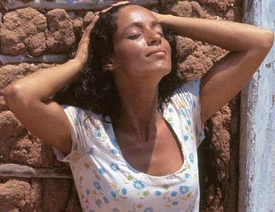 Musas inspiradoras de Caetano Veloso: Sonia Braga