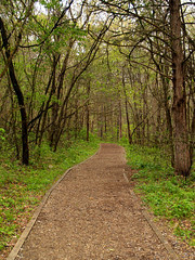 Trail through Lost Valley