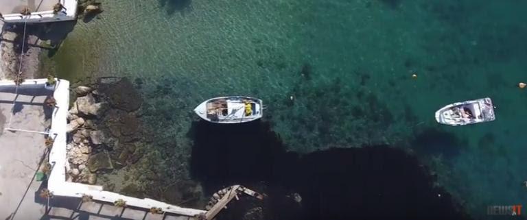 Πετρελαιοκηλίδα στον Σαρωνικό: Θλιβερές εικόνες από drone | Newsit.gr
