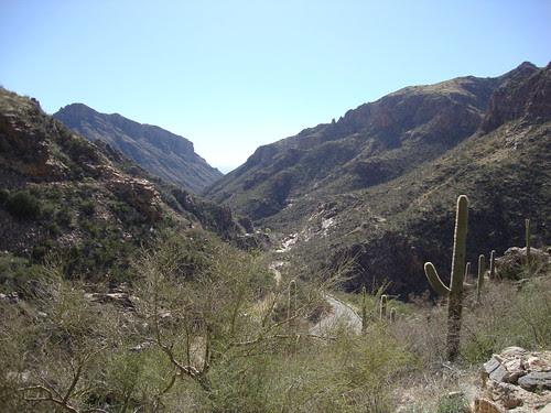 Sabino Canyon