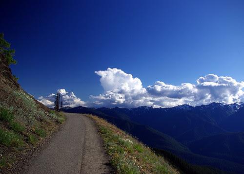 2010-08-28 Hurricane Ridge (110)