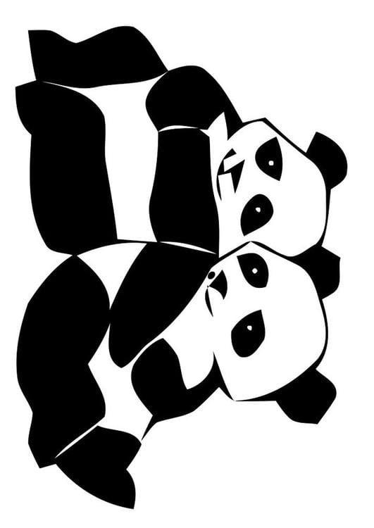 Dibujo Para Colorear Osos Panda Img 19629