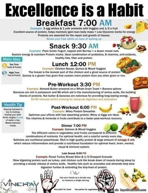 Daily Eating Schedule To Lose Weight   Daily Planner