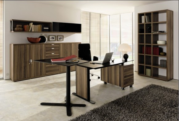 Style  Home Office 5