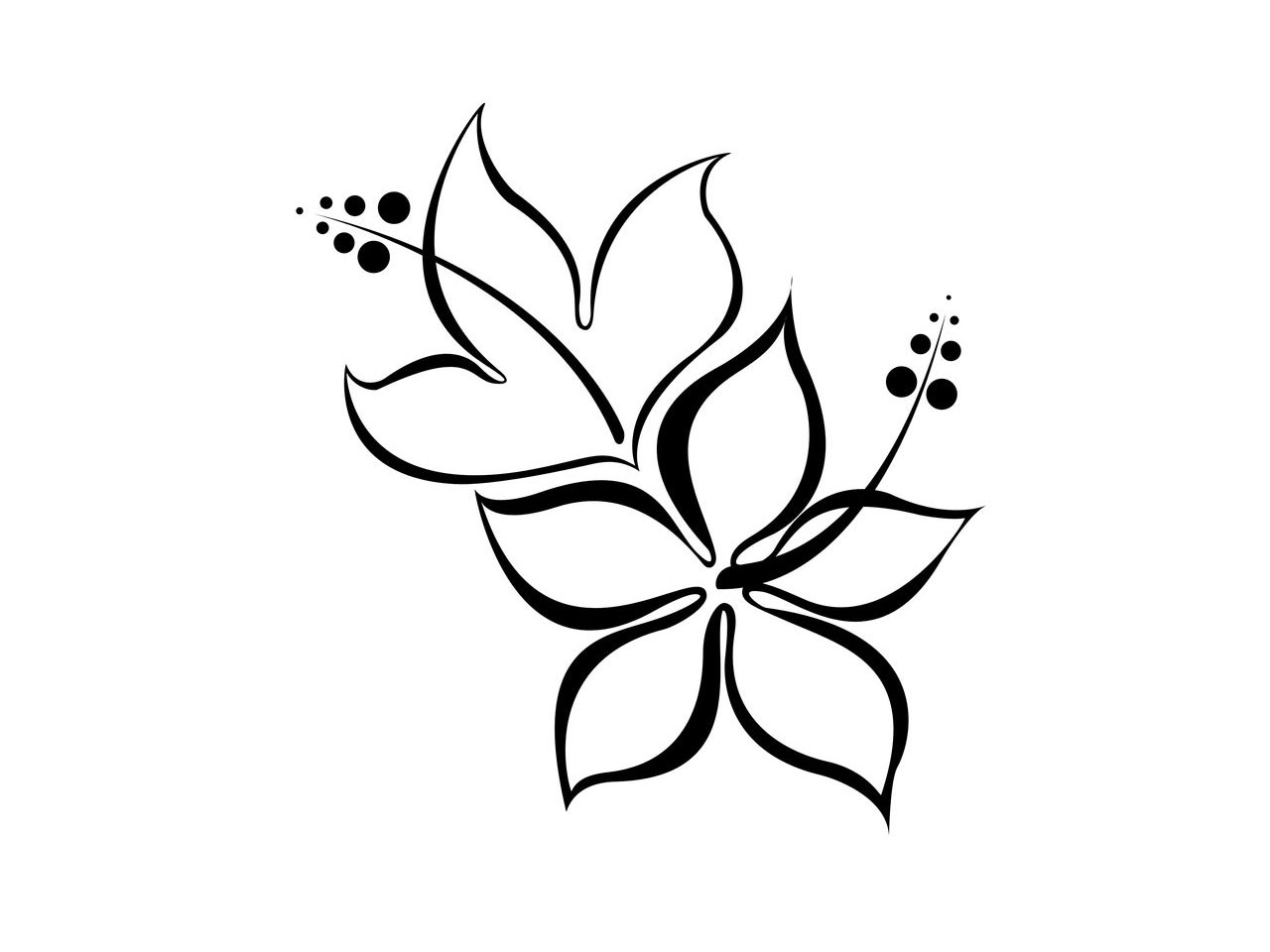 Flower Flower Drawing Images Simple