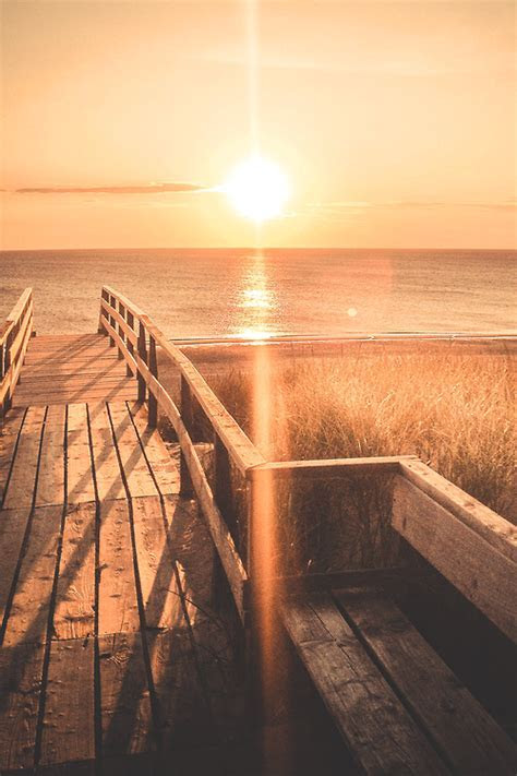 Sunshine At The Dock Pictures, Photos, and Images for