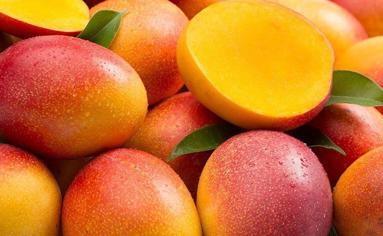 Resultado de imagem para fruta manga