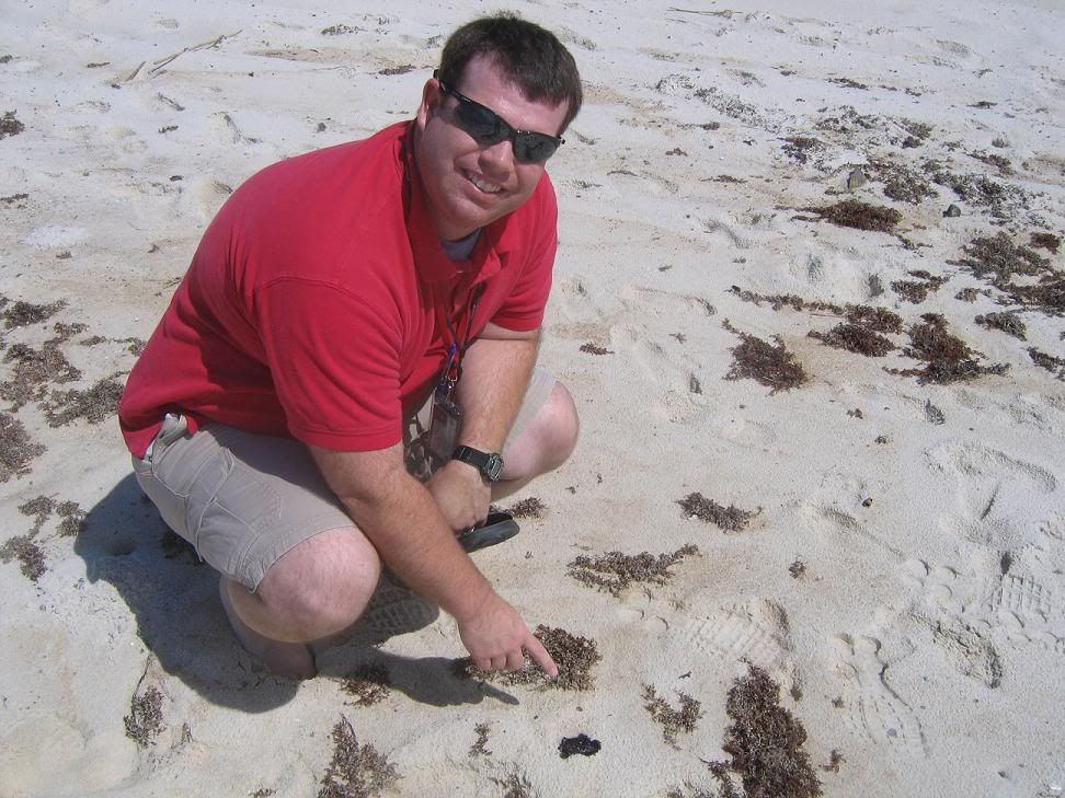 Eddie showing the oil strewn on the beach
