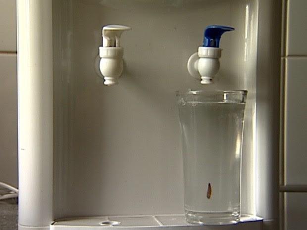 Caramujo foi encontrado em água mineral. (Foto: Reprodução/TV Gazetae)