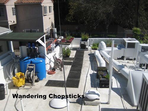 Rooftop Garden - Playa Restaurant - Los Angeles 2