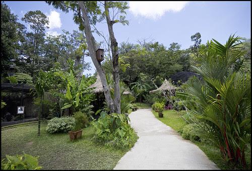 At the Phuket Bird Park