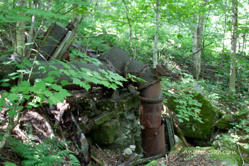 Abandoned Penstock & Turbine in Westmore (looking uphill)-4.jpg