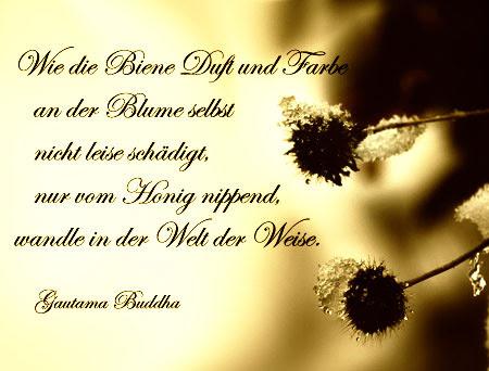Adventsgedanken Zum 18 Dezember Sprüche Und Gedichte