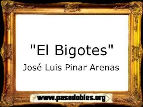 José Luis Pinar Arenas