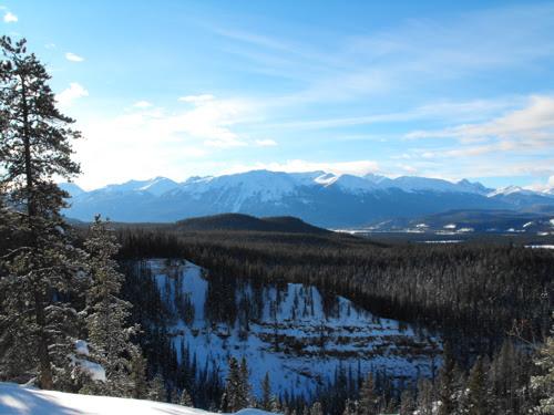 Mountain view in Jasper