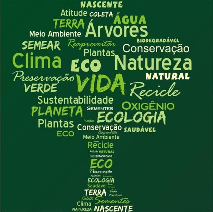 Resultado de imagem para cartaz sobre o dia mundial do meio ambiente