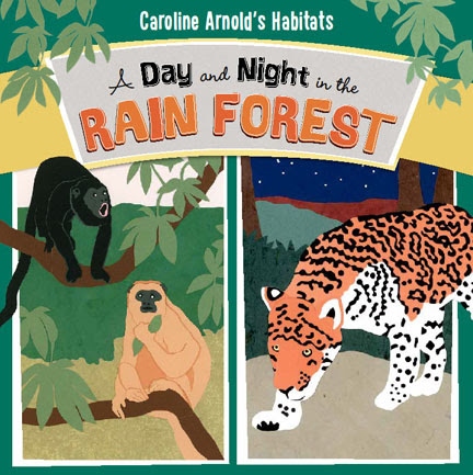 A Day and Night in the Rain Forest