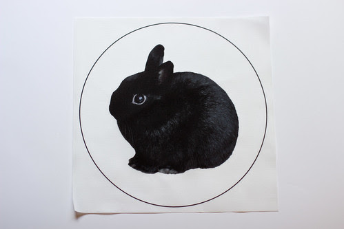 George Bunny Pillow Panels by Jeni Baker