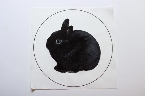 George Bunny Pillow Panels by Jeni Baker