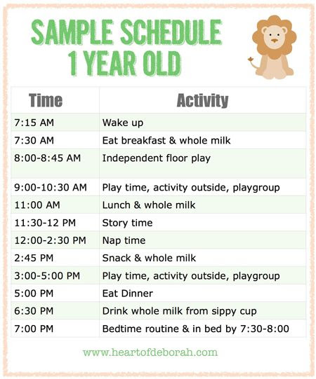 Daily Schedule For 1 Year Old