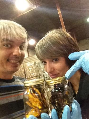 spacebar fermentationists