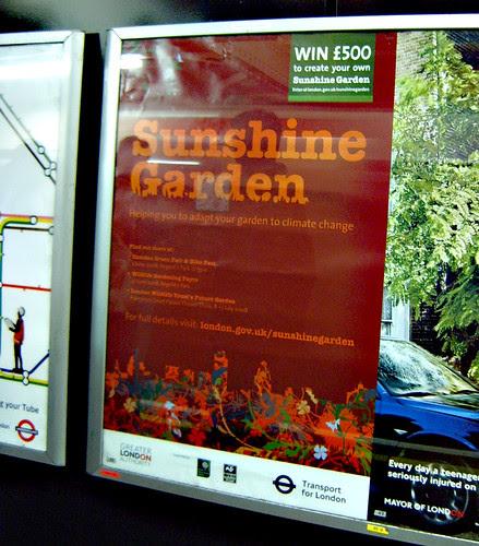 Sunshine Garden Poster on the Tube