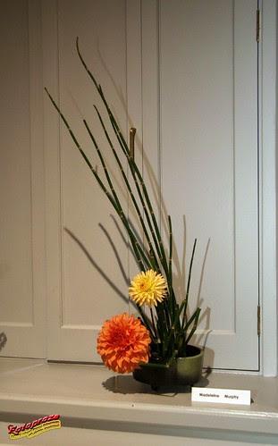 Ikebana - Autumn Songs vol 5 Chants d'automne 2007 C20070929 061 by fotoproze