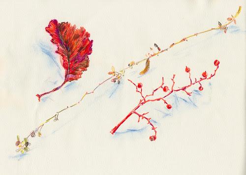 November 2013: Treasures - Giving Thanks. by apple-pine