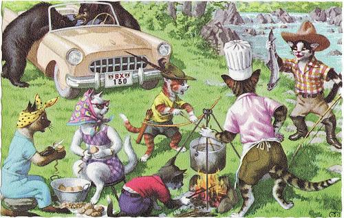 cats camping