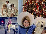 A set of hilariously posed photos from the team behind AwkwardFamilyPhotos.com is a reminder of what can happen when pet owners become a bit obsessed.