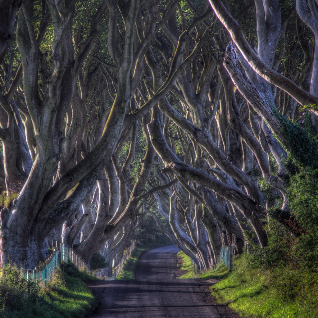 26 Lugares reais que parecem que foram retirados dos contos de fadas 24