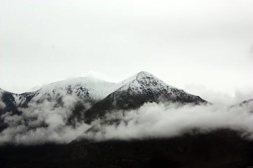 Tranzalpine-Franz Josef 069