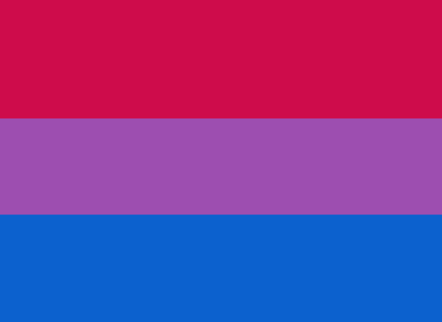 Image result for bisexual flag