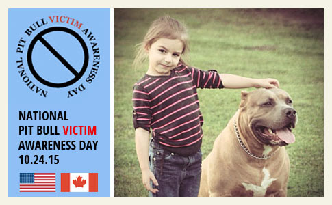 take action on national pit bull victim awareness day, pit bull spay neuter laws