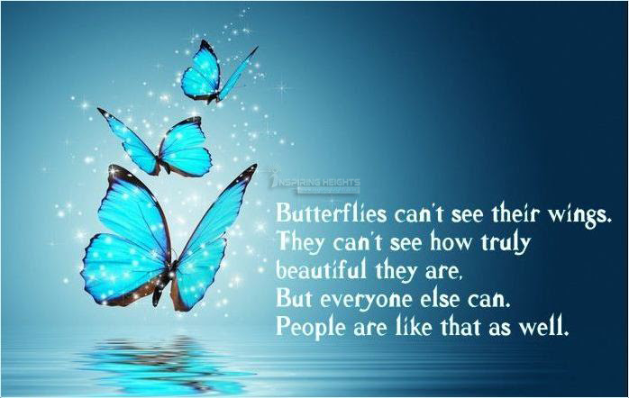 Butterflies Images Butterflies Quote Wallpaper And Background