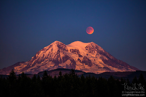 Mount Rainier and Lunar Eclipse, Washington