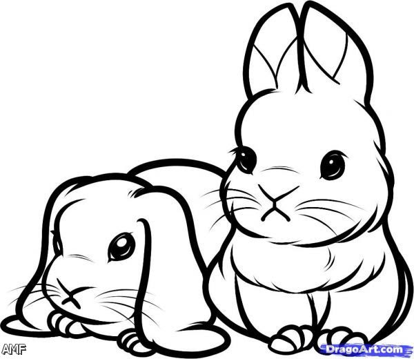 Cute Baby Bunny Coloring Pages 2015-2016 | Fashion Trends ...