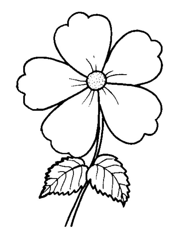 Lukisan Bunga Simple Hitam Putih Cikimm Com