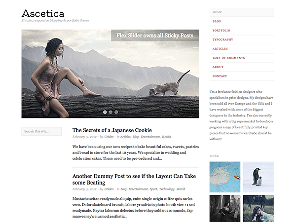 Ascetica Free WordPress Theme