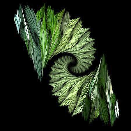Kiwi Koru