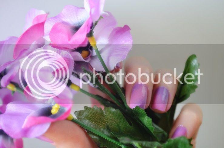 photo 15_zps4d64e8ac.jpg