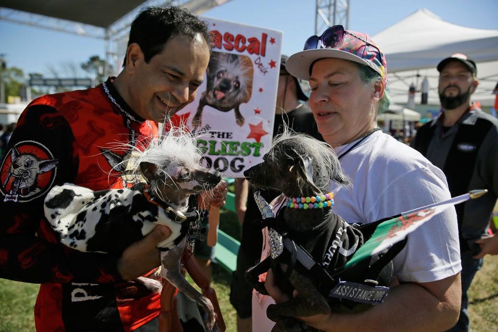 Rascal, à esquerda, e Chase, o terceiro colocado, à direita (Foto: Eric Risberg/AP)