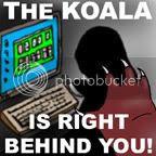 Koala Challenge 1