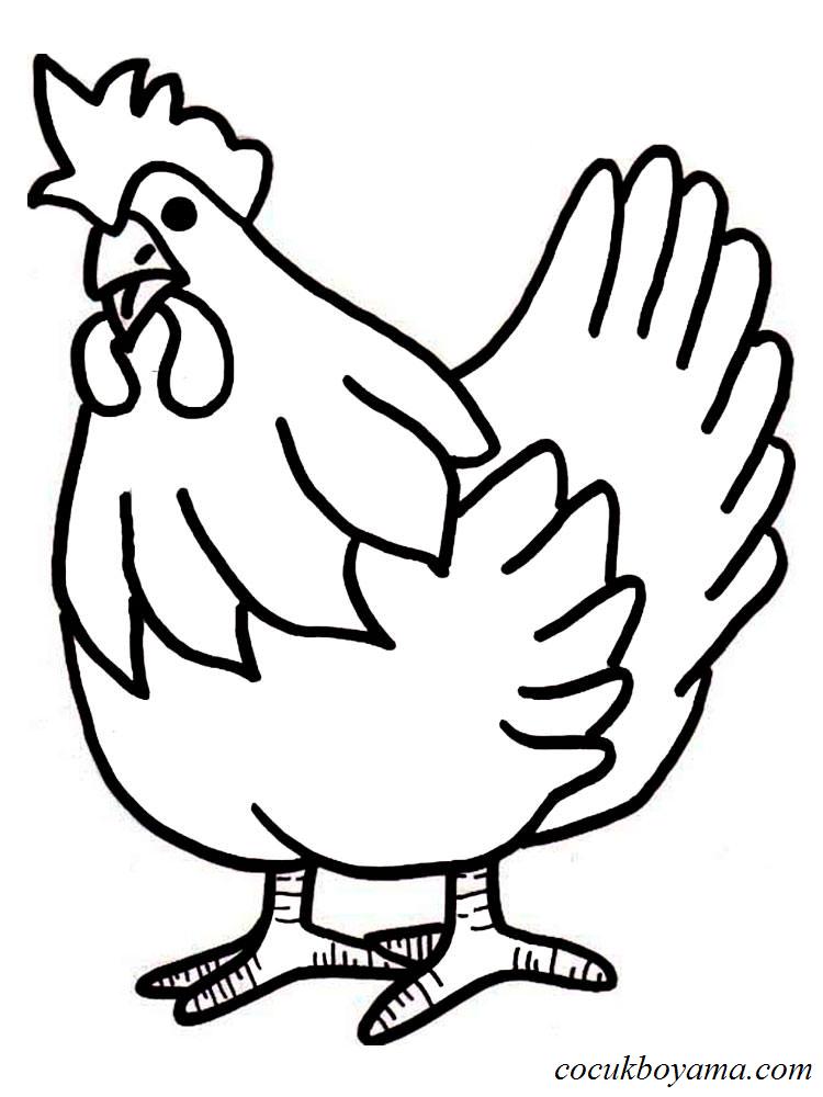 Tavuk 14 ücretsiz Boyama Resimleri