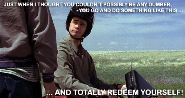 Dumb and Dumber Quotes and GIFs  Laugh Out Loud