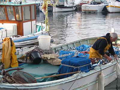 retour de pêche 2