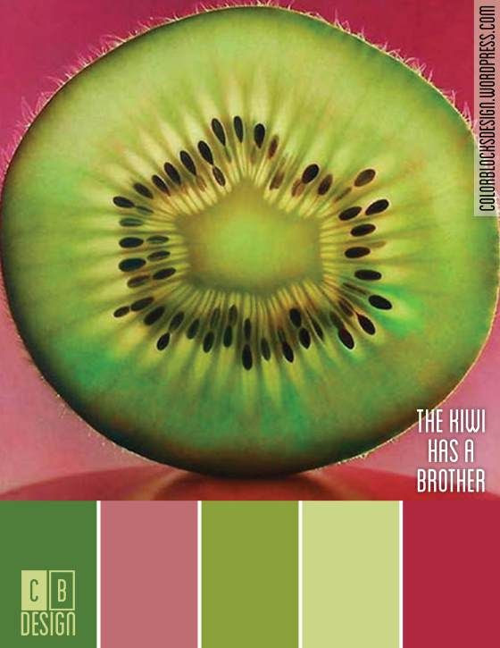 The Kiwi Has a Brother | Color Blocks Design 10.3.12