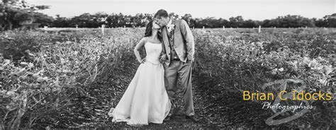 Affordable Wedding Photography Packages, starting at $800
